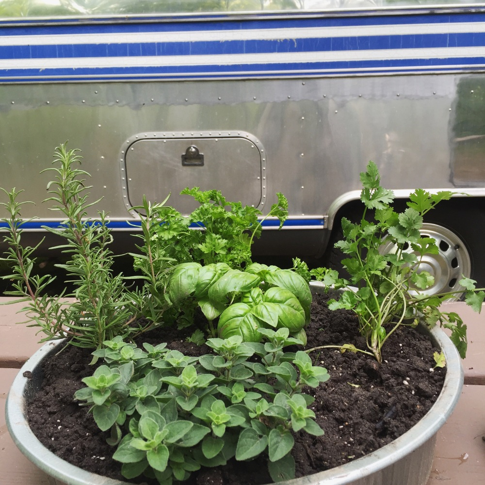 container herb garden outside our 1984 airstream international